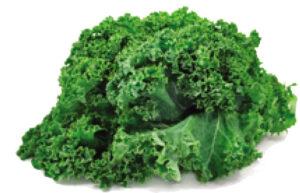 Nutrients in kale